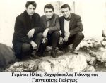 giannis-zaxaropoulos-38