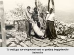 giannis-zaxaropoulos-64